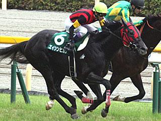 20150614ashinhikari